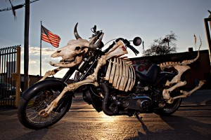 mad cow tour motorcycle lawyer news