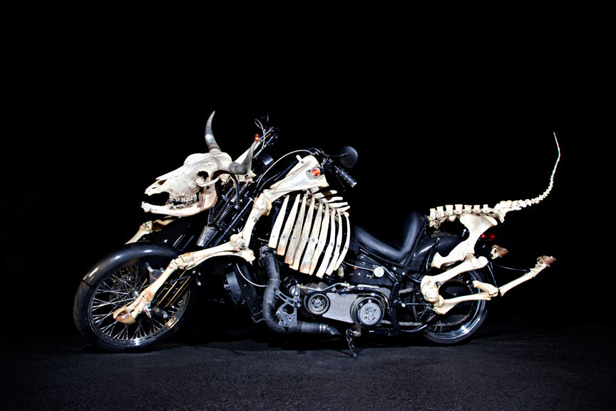 mad cow motorcycle tour biker attorney news
